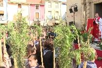 Santa Faz 2016