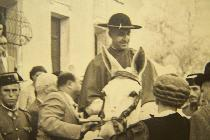 D. Pablo Barrachina